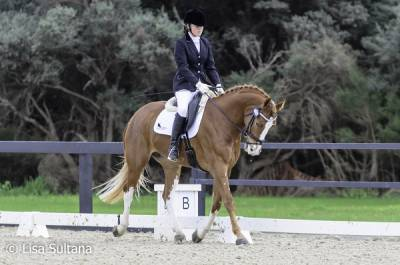 b2ap3_thumbnail_Winter-Dressage--24R.jpg